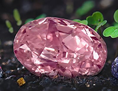 The Juliet Pink Diamond