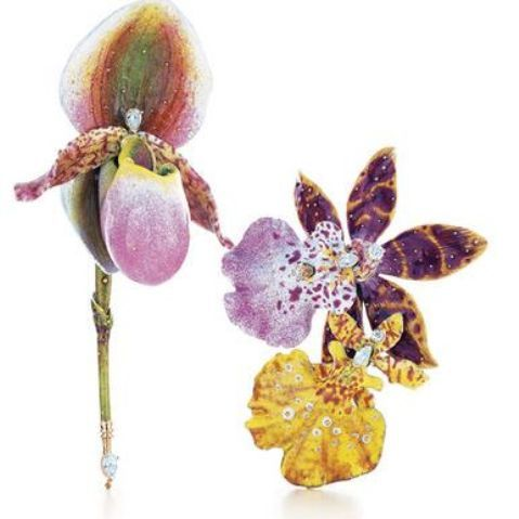 orchid brooches designed by farnham