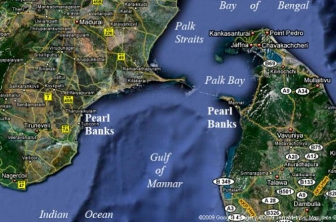 Pearl banks of the Gulf of Mannar